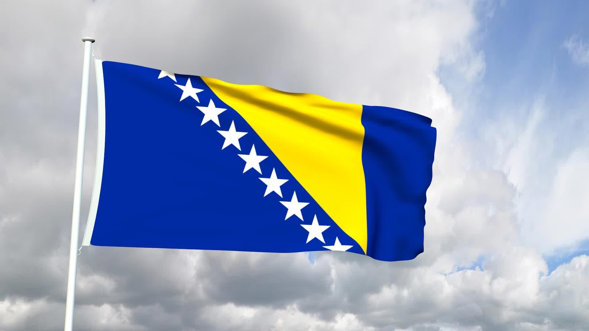 steag bosnia herțegovina