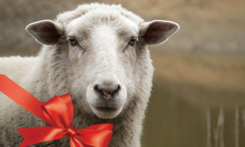 coș cadou Crăciun